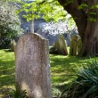Stock Photo: Grave churchyard graveyard