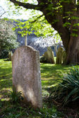 Grave churchyard graveyard — Stock Photo