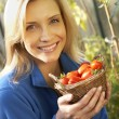 Young woman harvesting tomatoes — Stock Photo #11878966