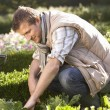 Stock Photo: Young man working in garden