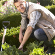 Young man working in garden — Stock Photo #11878980
