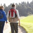 Young couple walking in park — Stock Photo #11879193