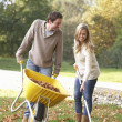Young couple raking autumn leaves in garden — Stok Fotoğraf #11879320