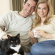 Young couple sitting with cat on sofa with cup in hand — Stock Photo