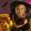 Stock Photo: Halloween party with child holding black cat in hand