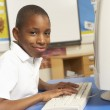 Schoolboy In IT Class Using Computer — Stock Photo #11879643