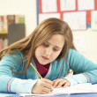 Schoolgirl Studying In Classroom — Stock Photo #11879837