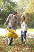 Young couple raking autumn leaves in garden — Stock fotografie