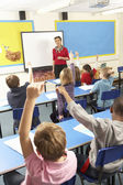 Schoolchildren Studying In Classroom With Teacher — Foto Stock