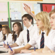 Teenage Student Answering Question Studying In Classroom — Stock Photo #11880191