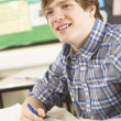 Male Teenage Student Studying In Classroom — Stock Photo #11880264