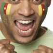 Постер, плакат: Young Male Sports Fan With Cameroon Flag Painted On Face