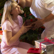 Stock Photo: Couple Exchanging Presents In Front Of Tree