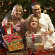 Family Opening Christmas Present In Front Of Tree — Stock Photo #11880830