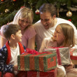 Family Opening Christmas Present In Front Of Tree - Stock Photo