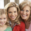 Stock Photo: Portrait Of Grandmother,Mother And Daughter