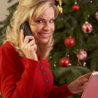Woman Shopping Online For Christmas Gifts - Stock Photo