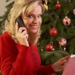 kvinna shopping online för julklappar — Stockfoto