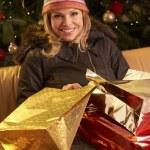 Noel alışveriş gezisi sonra dönen kadın — Stok fotoğraf #11881104