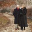 Senior Couple On Winter Walk Through Frosty Landscape — Stock Photo