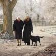 Senior Couple On Winter Walk With Dog Through Frosty Landscape — Stock fotografie