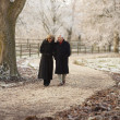 Старший пара на Зимняя прогулка через Морозное пейзаж — Стоковое фото