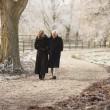 couple de personnes âgées sur l'hiver à travers le paysage givré — Photo