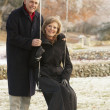 Senior Couple Sitting On Garden Swing In Frosty Landscape — Stock Photo #11881228