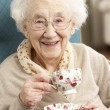 ストック写真: Senior Woman Enjoying Cup Of Tea At Home