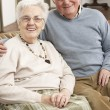 Portrait Of Happy Senior Couple At Home — Stock Photo