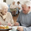 Senior Couple Enjoying Meal Together — Stock Photo #11881353