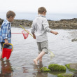 Stock Photo: Two boys collecting shells on beach