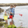 Two boys collecting shells on beach — Stock Photo #11881679