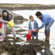 Young family at beach collecting shells — Stock Photo