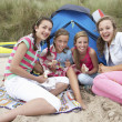 Stock Photo: Teenagers having picnic