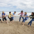 Stock Photo: Teenagers playing tug of war