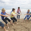 Teenagers playing tug of war - Stock Photo