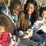 Happy family having picnic — Stock Photo