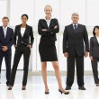 Confident business — Stock Photo #11882234