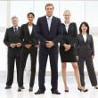 Confident business — Stock Photo #11882237