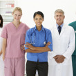 Portrait of medical professionals — Stock Photo #11882375