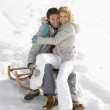 Young Couple On A Sled — Stock Photo