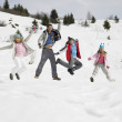 Young Family On Winter Vacation — Stock fotografie #11882668