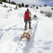 Pre-teen Boy Pulling Sled In Snow — Stock Photo #11882706