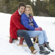 Young Couple On Sled In Alpine Snow Scene — Stock Photo #11882766
