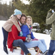 Young Family Sitting On A Sled In The Snow — Stockfoto