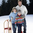 Young Father And Children In Snow With Sled - Stock Photo