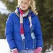 Young Woman  In Alpine Snow Scene - Stock Photo