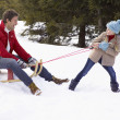Stock Photo: Young Girl Pulling Father Through Snow On Sled