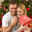 Young couple with gifts in front of Christmas tree — Stock Photo #11882831